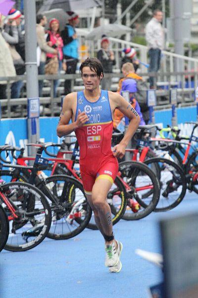 Campeonato del Mundo de Triatlón